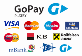 go pay banner