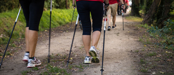 Active Nordic Walking 2 nights