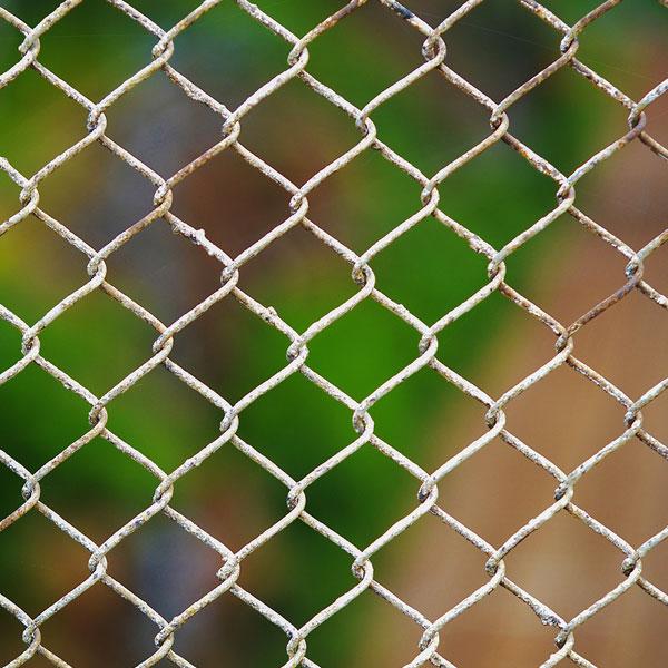 drátěný plot - pletivo