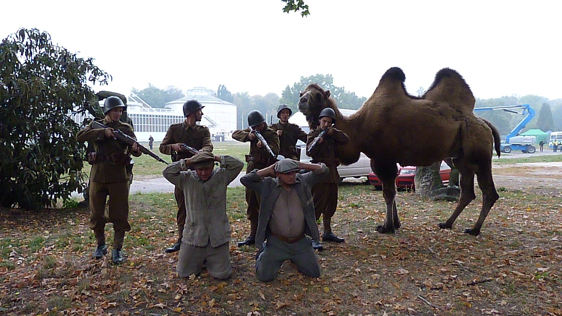 Exotická zvířata do filmu a reklamy