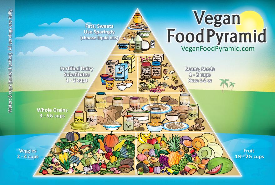 """Začnu frází, kterou jsem četl někdena internetu -""""Kdyby jatka měla stěny ze skla, každý by byl vegetarián"""".Jsem také vegetarián již"""