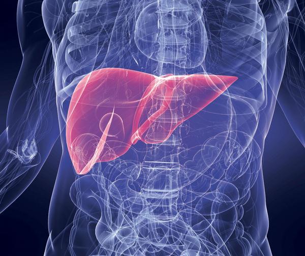 Umět rozpoznat příznaky onemocnění jater vám může zachránit život