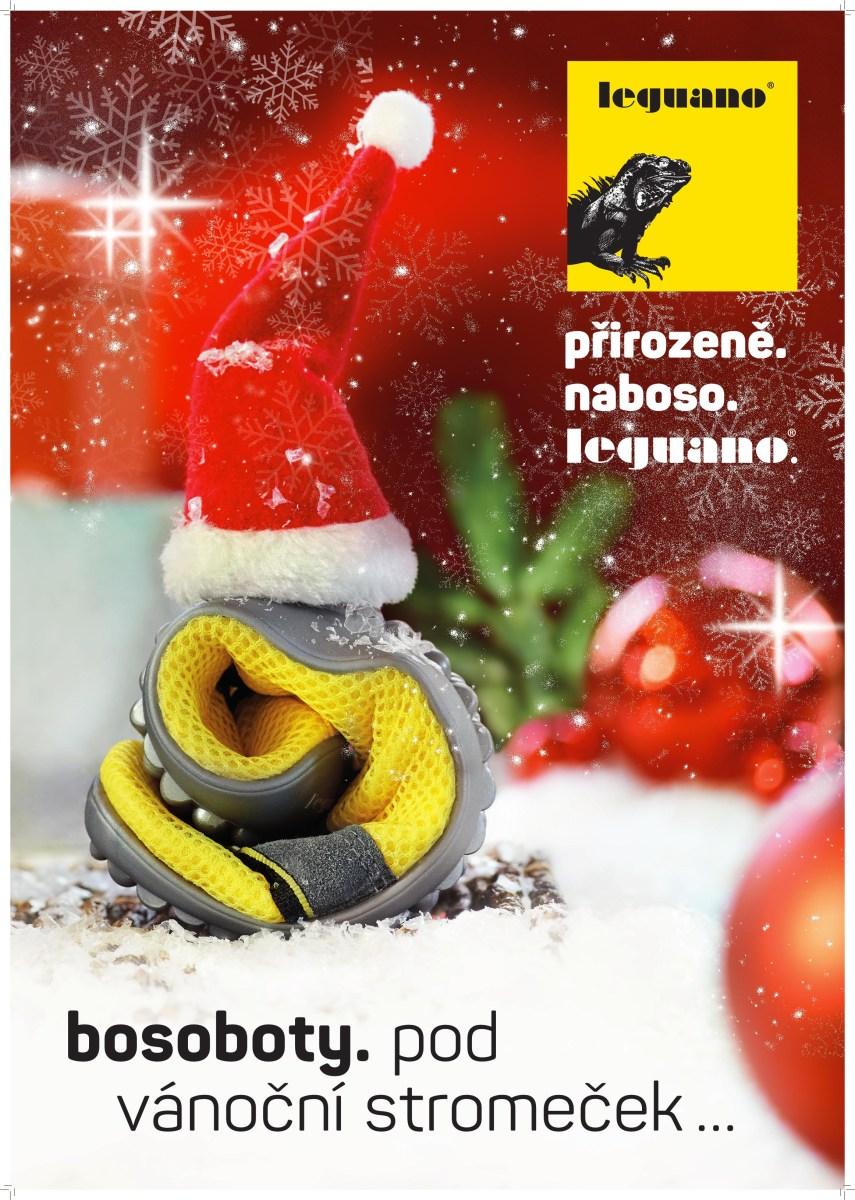 Leguano Vánoce