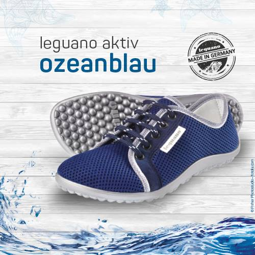 Leguano ozeanblau