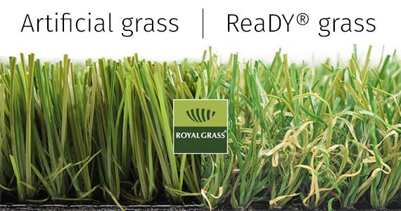 umělý trávník Royal Grass s technologií ReaDY