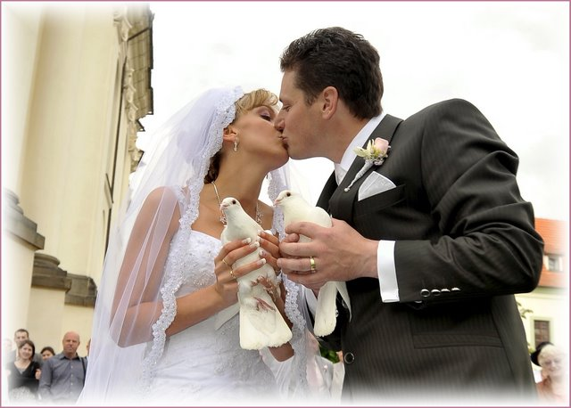 wedding doves release