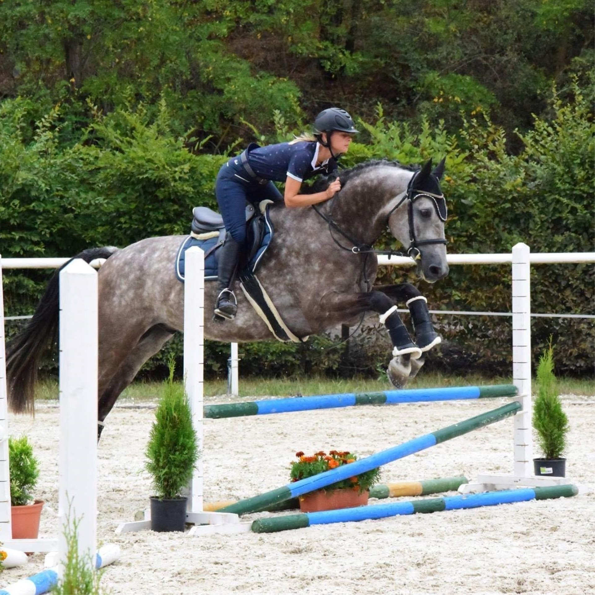 hunter--equitation
