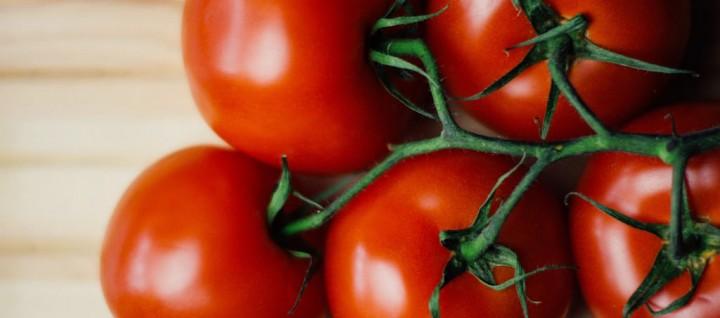 Rajská rajčata