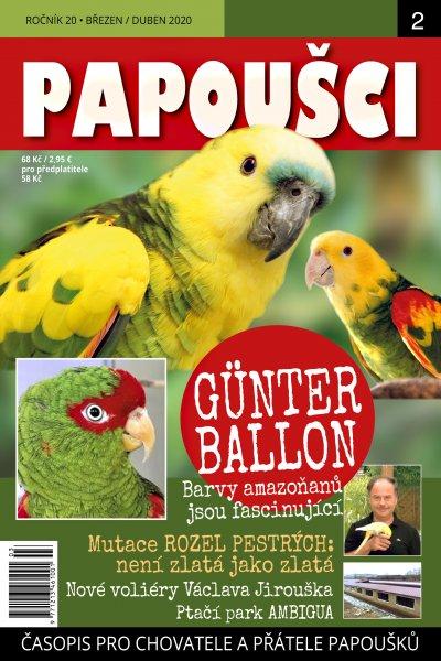Papoušci 2020 2