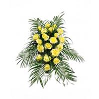mini karafiát žlutý