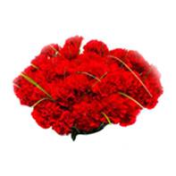 karafiát červený