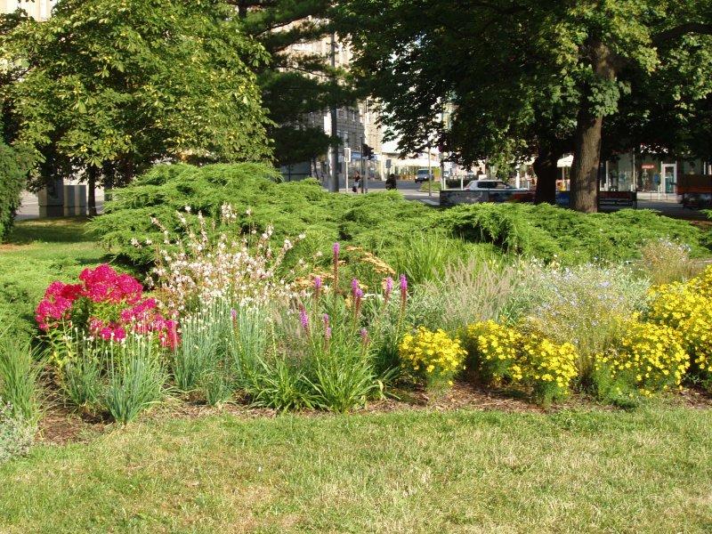 Údržba ploch veřejné zeleně