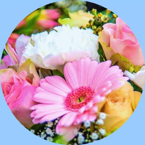 Prodejna květin