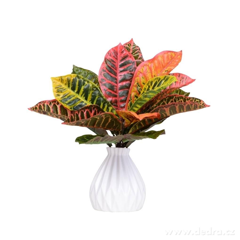 trs listů